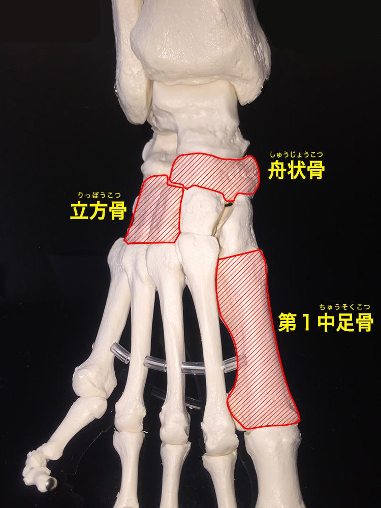 足の矯正とテーピング治療