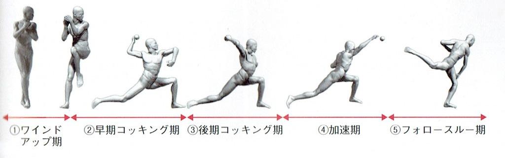 5層に分かれる投球動作